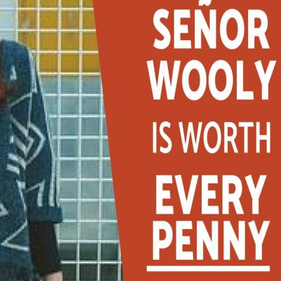 Is Señor Wooly Pro Worth It?